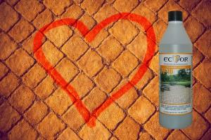 Ector PP-10 protezione pavimenti porosi